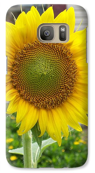 Galaxy Case featuring the photograph Bright Sunflower Happiness by Belinda Lee