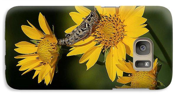 Sunny Hopper Galaxy Case by Ernie Echols