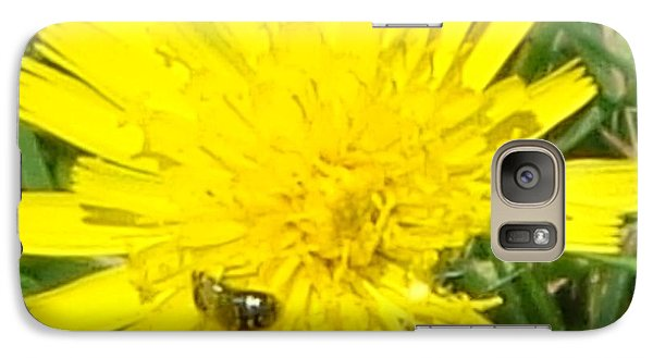 Galaxy Case featuring the photograph Sunny Lunch by Christina Verdgeline