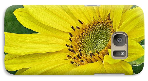 Galaxy Case featuring the photograph Sunny Side Up by Janice Westerberg