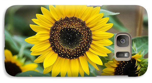 Galaxy Case featuring the photograph Sunny Smile Sunflower by Phil Abrams