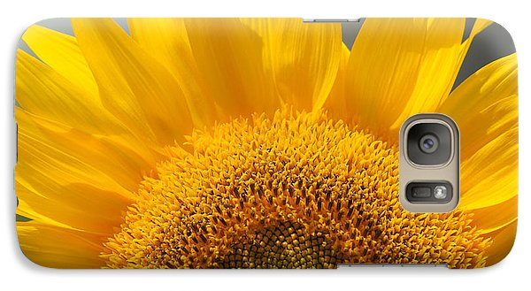 Galaxy Case featuring the photograph Sunny Sunflower by Olivia Hardwicke
