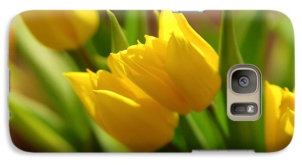 Galaxy Case featuring the photograph Sunny Tulips by Erin Kohlenberg