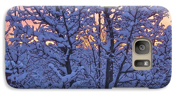 Galaxy Case featuring the photograph Sunrise Branches by Alice Mainville
