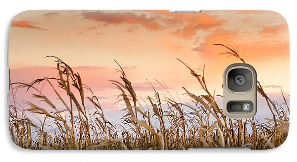 Galaxy Case featuring the photograph Sunset Against The Cornstalks by Dawn Romine