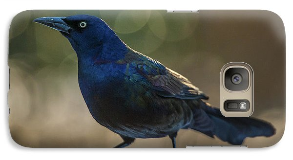 Galaxy Case featuring the photograph Sunset Grackle by Jim Moore