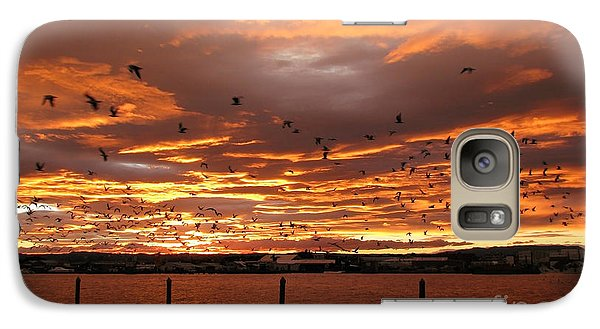 Galaxy Case featuring the photograph Sunset In Tauranga New Zealand by Jola Martysz