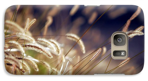 Galaxy Case featuring the photograph Sunset On Autumn Grass by Lincoln Rogers