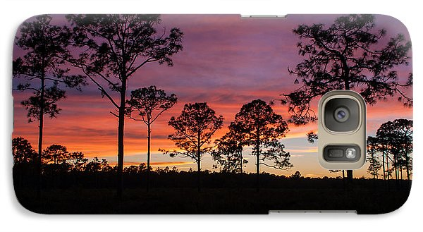 Galaxy Case featuring the photograph Sunset Pines by Paul Rebmann