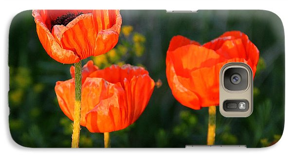 Galaxy Case featuring the photograph Sunset Poppies by Debbie Oppermann