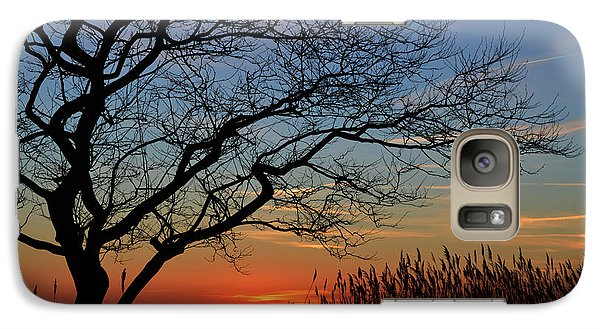 Galaxy Case featuring the photograph Sunset Tree In Ocean City Md by Bill Swartwout