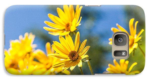 Pasture Galaxy S7 Case - Sunshine by Chad Dutson