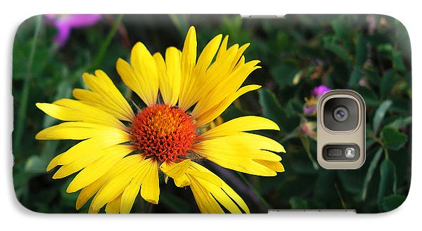 Galaxy Case featuring the photograph Sunshine by Craig T Burgwardt