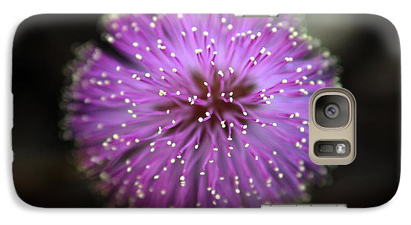 Galaxy Case featuring the photograph Sunshine Mimosa by Greg Allore