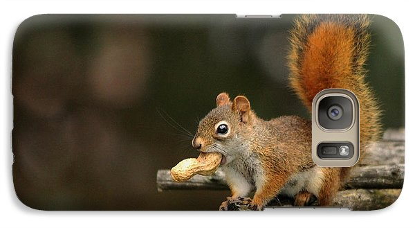 Galaxy Case featuring the photograph Surprised Red Squirrel With Nut Portrait by Debbie Oppermann