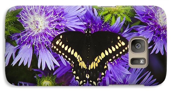 Galaxy Case featuring the photograph Swallowtail And Astor by Debra Crank