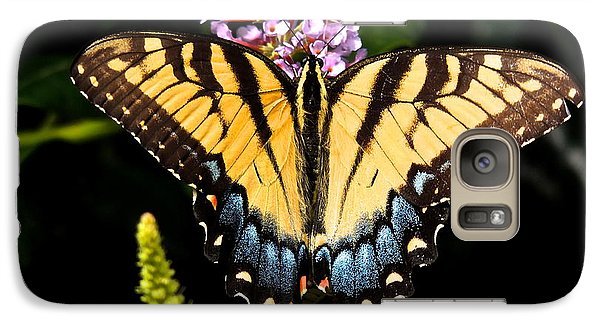 Galaxy Case featuring the photograph Swallowtail Beauty by Eve Spring