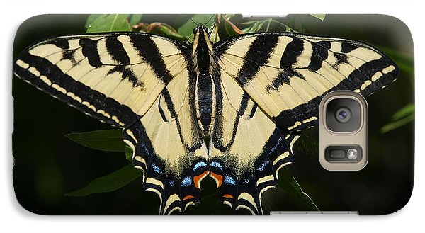 Galaxy Case featuring the photograph Swallowtail  by Jenessa Rahn