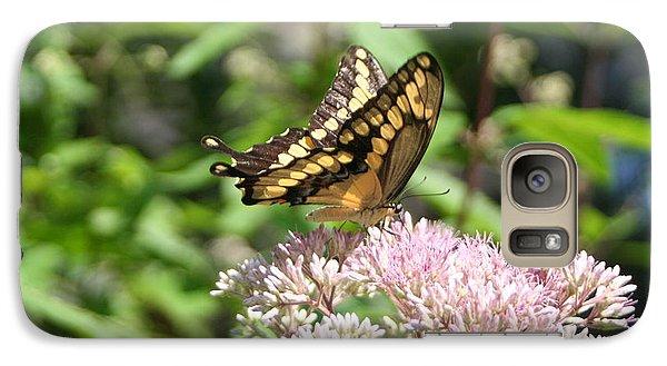 Galaxy Case featuring the photograph Swallowtail by Karen Silvestri