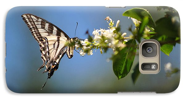 Galaxy Case featuring the photograph Swallowtail by Mark Alan Perry