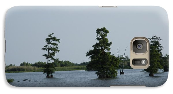 Galaxy Case featuring the photograph Swamp Tall Cypress Trees  by Joseph Baril