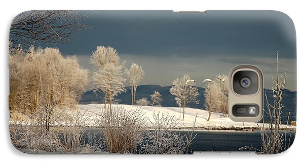 Galaxy Case featuring the photograph Swans On A Frosty Day by Randi Grace Nilsberg