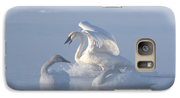 Galaxy Case featuring the photograph Trumpeter Swans - Three's Company by Patti Deters