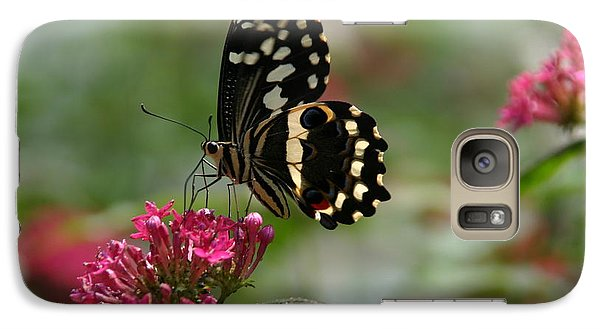 Galaxy Case featuring the photograph Sweet Nectar by Denyse Duhaime