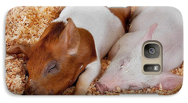 Galaxy Case featuring the photograph Sweet Piglets Nap by Valerie Garner