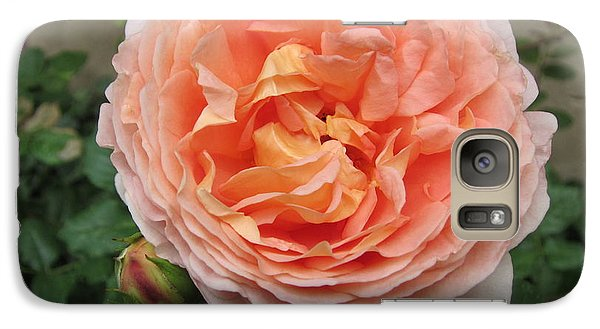 Galaxy Case featuring the photograph Sweet Rhapsody by Pema Hou