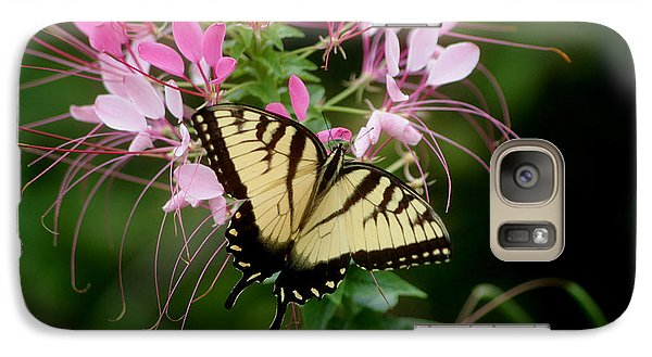 Galaxy Case featuring the photograph Sweet Swallowtail by Living Color Photography Lorraine Lynch