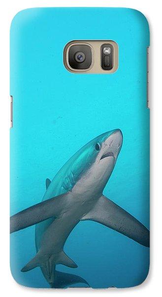 Swimming Thresher Shark Galaxy S7 Case by Scubazoo