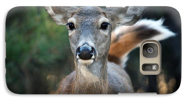 Galaxy Case featuring the photograph Swish Of The Tail  by Rita Kay Adams