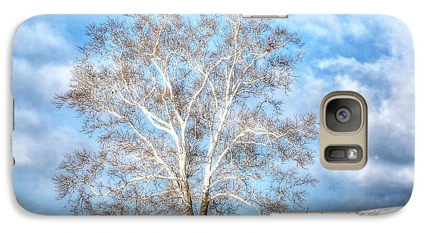 Galaxy Case featuring the photograph Sycamore Winter by Jaki Miller