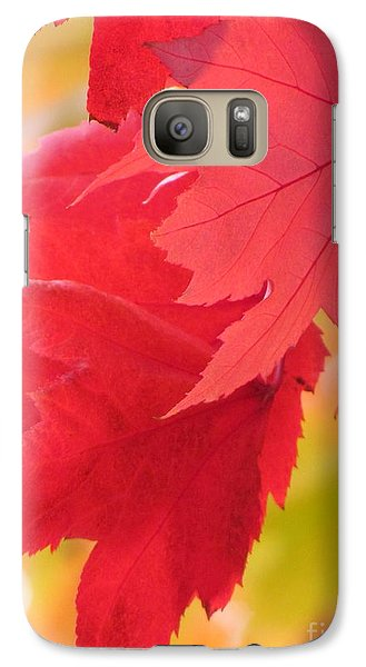 Galaxy Case featuring the photograph Symphony Of Autumn 22 by France Laliberte