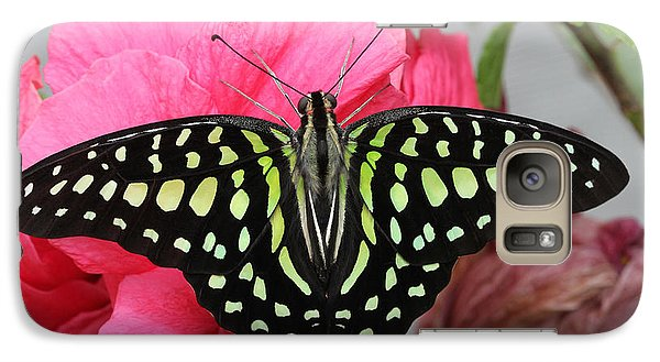 Galaxy Case featuring the photograph Tailed Jay Butterfly #6 by Judy Whitton