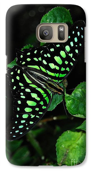 Galaxy Case featuring the photograph Tailed Jay Butterfly by Eva Kaufman