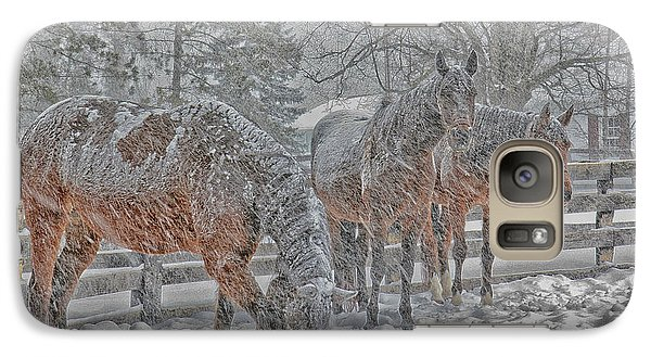 Galaxy Case featuring the photograph Tails To The Wind by Gary Hall