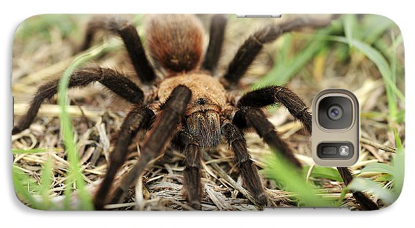 Galaxy Case featuring the photograph Tarantula by Karen Slagle