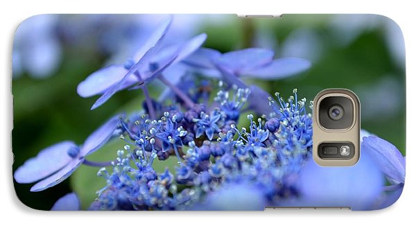 Galaxy Case featuring the photograph Taube Lacecap Hydrangea by Scott Lyons