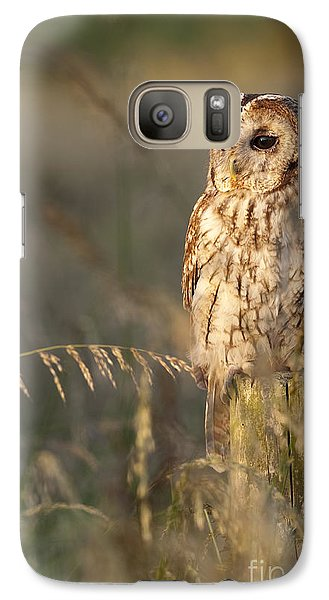 Tawny Owl Galaxy Case by Tim Gainey