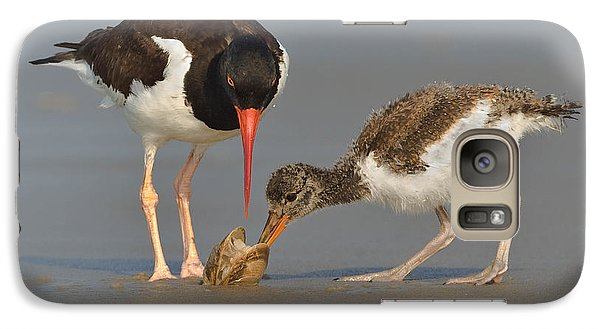 Galaxy Case featuring the photograph Teaching The Young by Jerry Fornarotto
