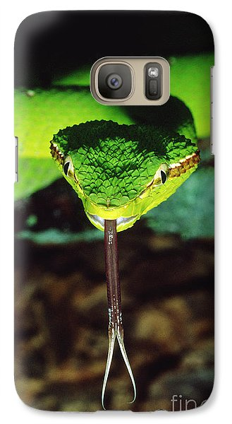 Temple Viper Galaxy S7 Case