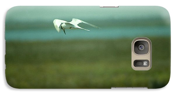 Galaxy Case featuring the photograph Tern In Flight by Bonnie Muir