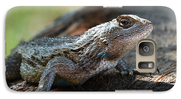 Galaxy Case featuring the photograph Texas Lizard by John Johnson