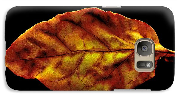 Galaxy Case featuring the photograph The Autumn Leaf by Marwan Khoury