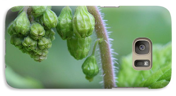 Galaxy Case featuring the photograph The Awakening by Debra Kaye McKrill