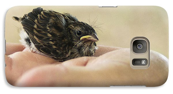 Galaxy Case featuring the photograph The Baby Wren Can't Fly by B Wayne Mullins