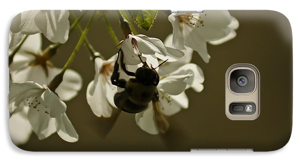 Galaxy Case featuring the painting The Bee by Debra Crank