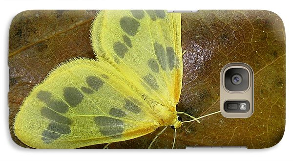 Galaxy Case featuring the photograph The Beggar Moth by William Tanneberger
